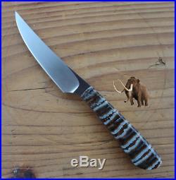 Arno Bernard Bush Baby Porcupine Fixed Blade Fossil Scales