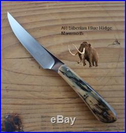 Arno Bernard SR. Rare Mini Skinner Fixed Blade Fossil Scales Prehistoric Mint