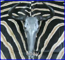 Deer Skull Real Wildebeest Skull African Antelope Silver Wildebeest Skull