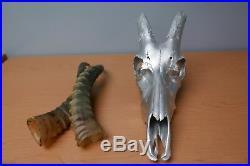 Deer Skull Silver Spray Painted African Blesbok Antelope Horns/Antelope Skull