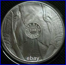 South Africa R5 2019 Silver 1Oz Coin Big5 Series Elephant UNC